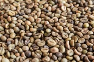 barra de cafe y granos
