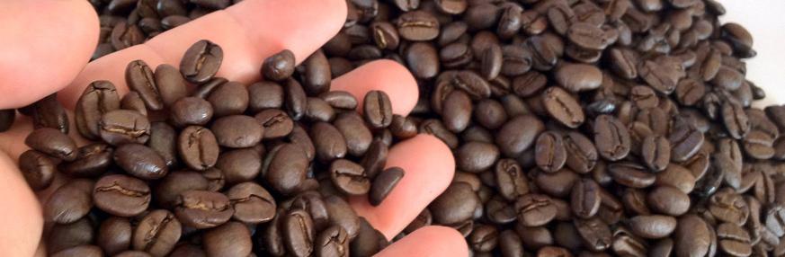 cafe-robusta-portte